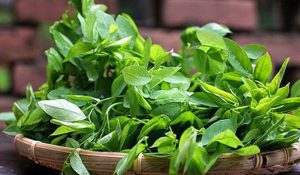 Lẩu Hải sản ăn rau gì ngon nhất?