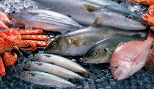 Các loại cá biển nào ảnh hưởng tốt hay xấu đến sức khỏe, bạn có biết?