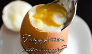 Trứng gà trần có tác dụng gì? Ăn trứng gà trần có tốt không?